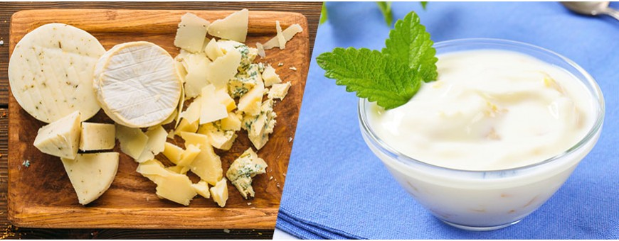 Cheese and Labneh
